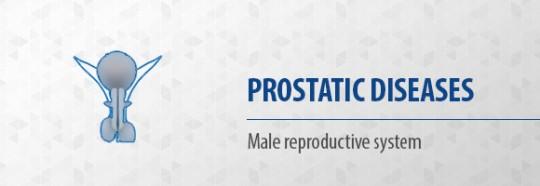 Prostatic diseases