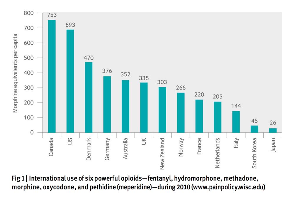 Morphine equivalents per capita